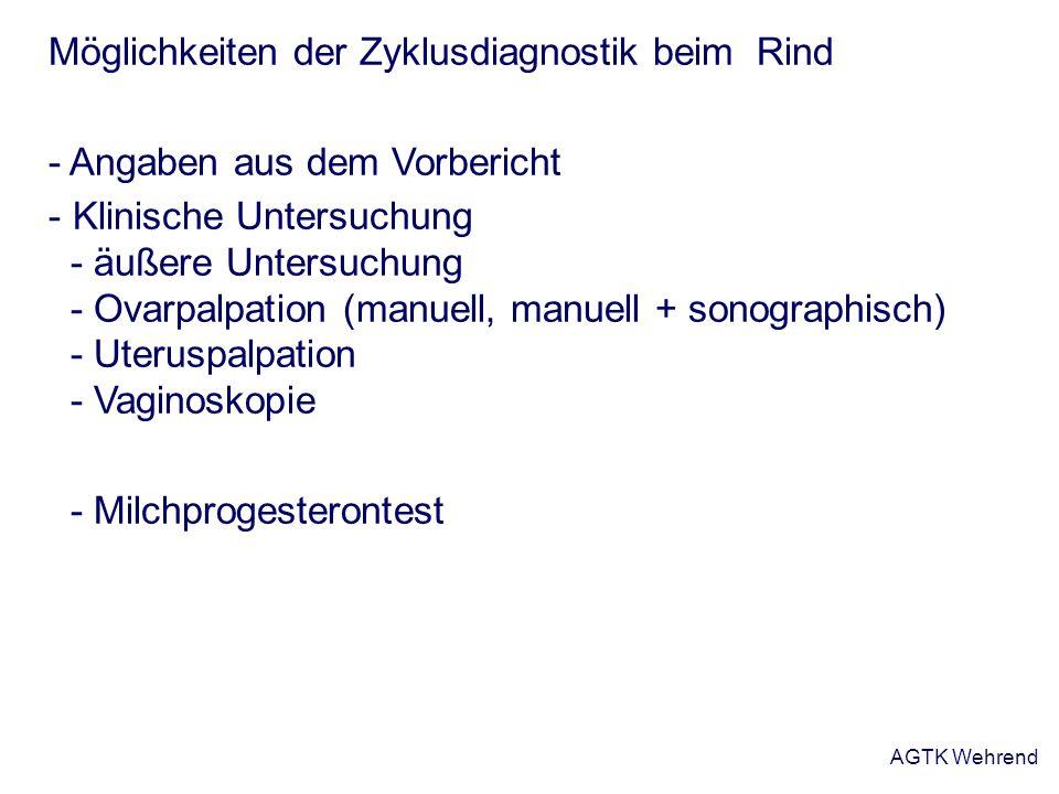 AGTK Wehrend Möglichkeiten der Zyklusdiagnostik beim Rind - Angaben aus dem Vorbericht - Klinische Untersuchung - äußere Untersuchung - Ovarpalpation