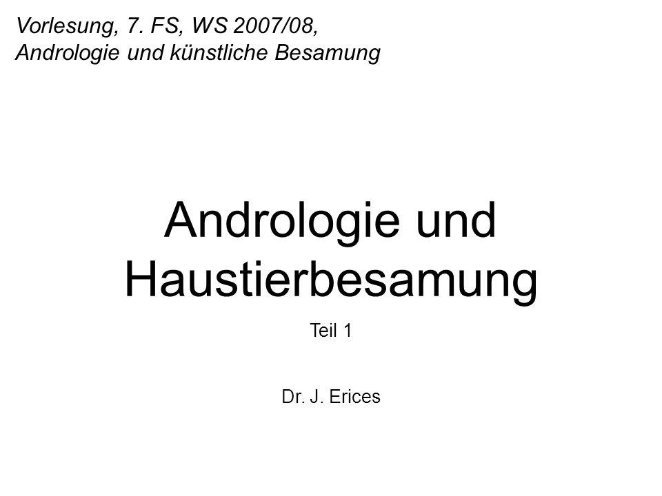 Vorlesung, 7. FS, WS 2007/08, Andrologie und künstliche Besamung Andrologie und Haustierbesamung Teil 1 Dr. J. Erices