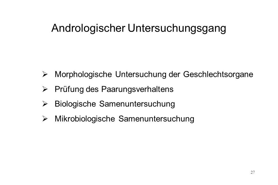 27 Andrologischer Untersuchungsgang Morphologische Untersuchung der Geschlechtsorgane Prüfung des Paarungsverhaltens Biologische Samenuntersuchung Mik