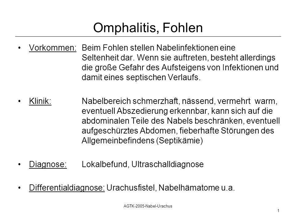 AGTK-2005-Nabel-Urachus 1 Omphalitis, Fohlen Vorkommen: Beim Fohlen stellen Nabelinfektionen eine Seltenheit dar. Wenn sie auftreten, besteht allerdin
