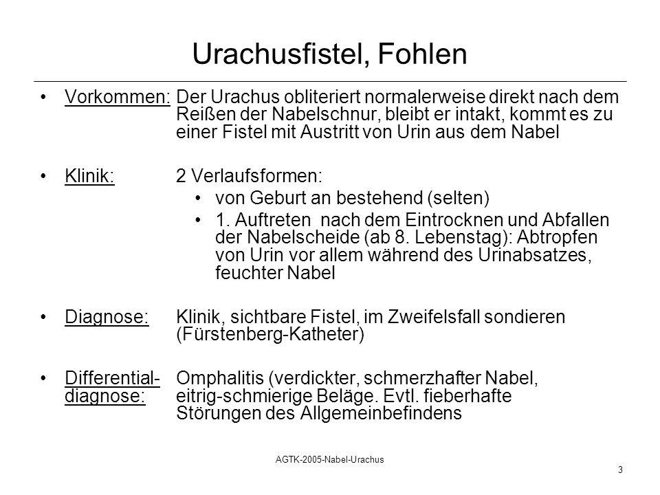 AGTK-2005-Nabel-Urachus 4 Urachusfistel, Fohlen Therapie konservative Behandlungoperatives Vorgehen Verätzen des Urachus im distalen Teil durch stark adstringierende Lösungen (Metakresol, Lugolsche Lösung, Silbernitrat o.ä.) Dosis: 1 bis max.