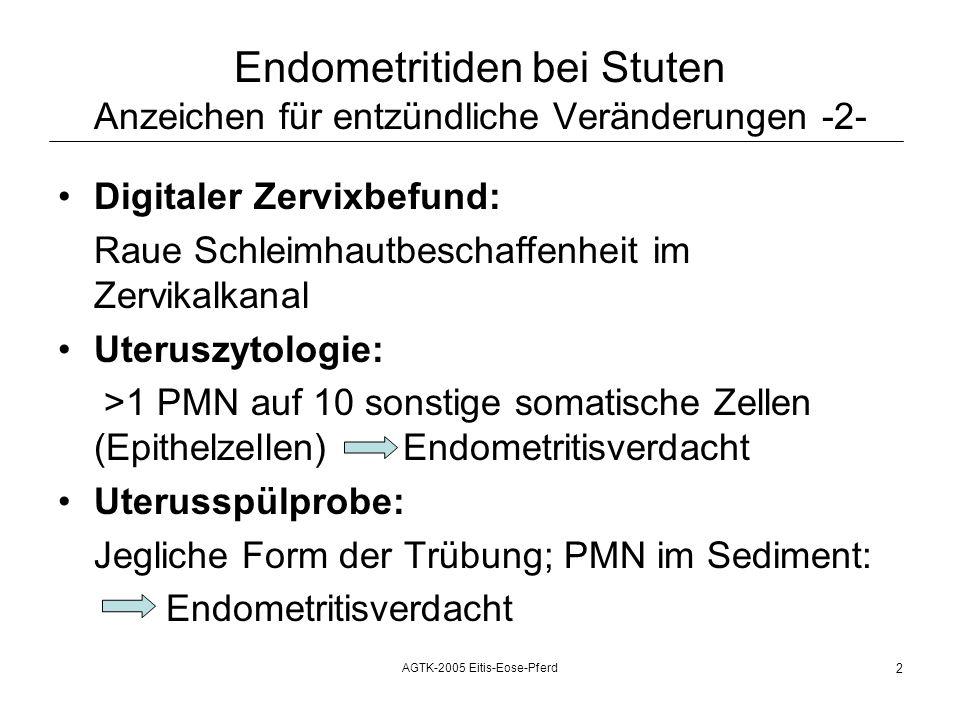 AGTK-2005 Eitis-Eose-Pferd 2 Endometritiden bei Stuten Anzeichen für entzündliche Veränderungen -2- Digitaler Zervixbefund: Raue Schleimhautbeschaffenheit im Zervikalkanal Uteruszytologie: >1 PMN auf 10 sonstige somatische Zellen (Epithelzellen) Endometritisverdacht Uterusspülprobe: Jegliche Form der Trübung; PMN im Sediment: Endometritisverdacht