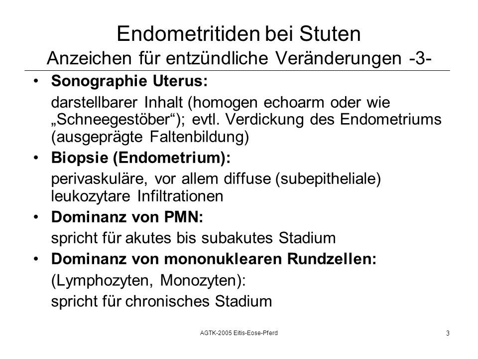 AGTK-2005 Eitis-Eose-Pferd 3 Endometritiden bei Stuten Anzeichen für entzündliche Veränderungen -3- Sonographie Uterus: darstellbarer Inhalt (homogen echoarm oder wie Schneegestöber); evtl.