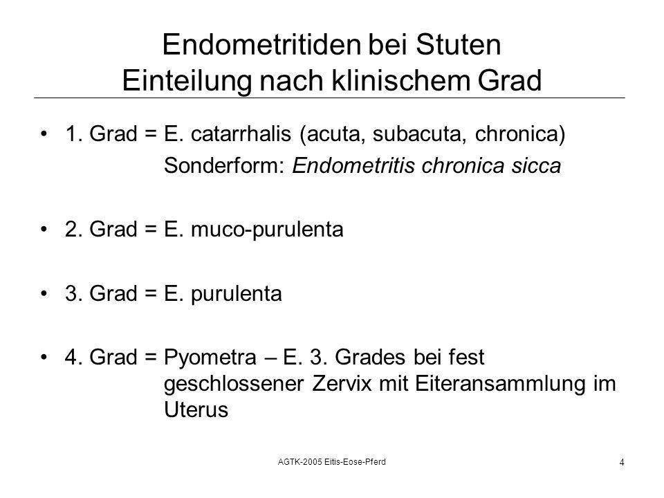 AGTK-2005 Eitis-Eose-Pferd 5 Endometritis-, Endometrosediagnose bei Stuten DiagnoseKlin.BefundSonographieBakteriologieSpülprobeBiopsie E.