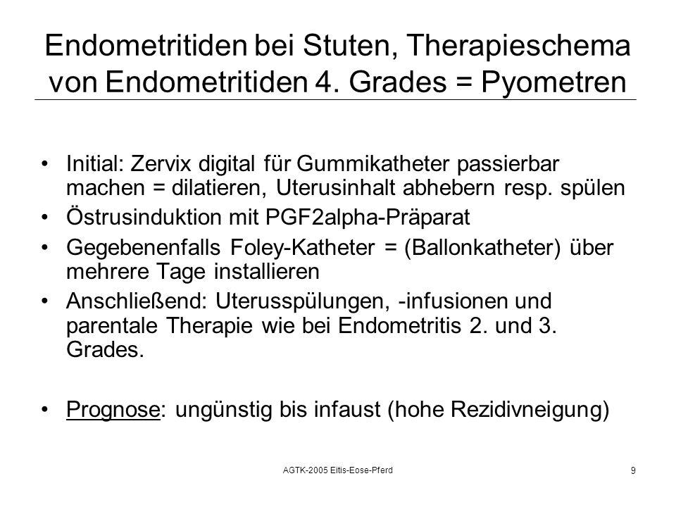AGTK-2005 Eitis-Eose-Pferd 10 Endometritiden bei Stuten, Therapieschema von B.U.-negativen E.