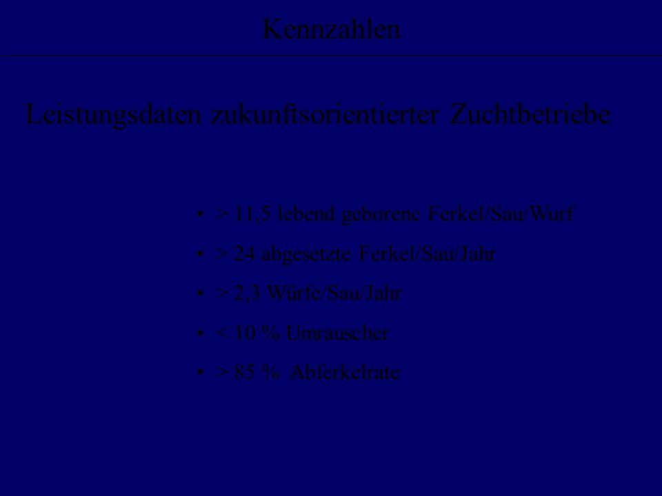 Kennzahlen > 11,5 lebend geborene Ferkel/Sau/Wurf > 24 abgesetzte Ferkel/Sau/Jahr > 2,3 Würfe/Sau/Jahr < 10 % Umrauscher > 85 % Abferkelrate Leistungs