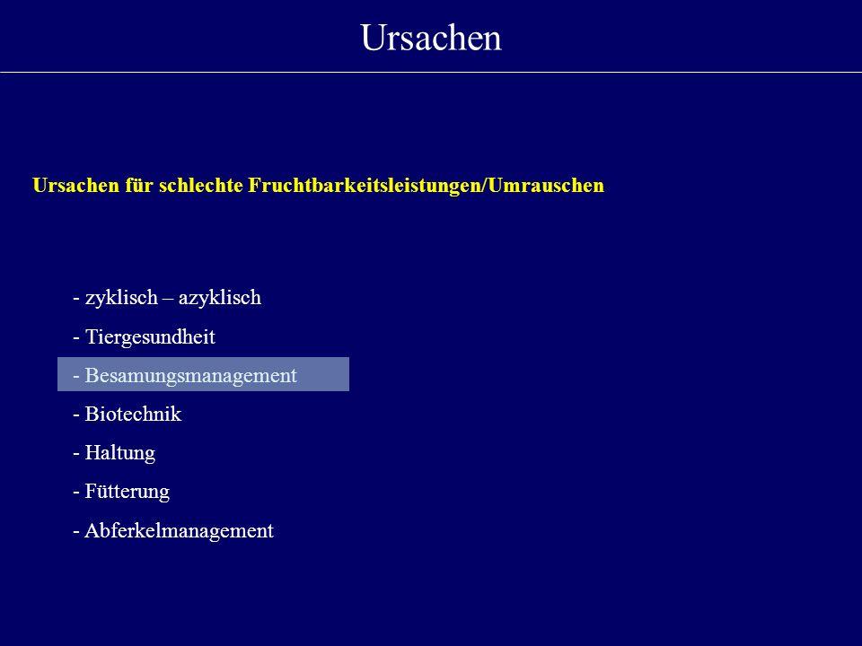Ursachen - zyklisch – azyklisch - Tiergesundheit - Besamungsmanagement - Biotechnik - Haltung - Fütterung - Abferkelmanagement Ursachen für schlechte