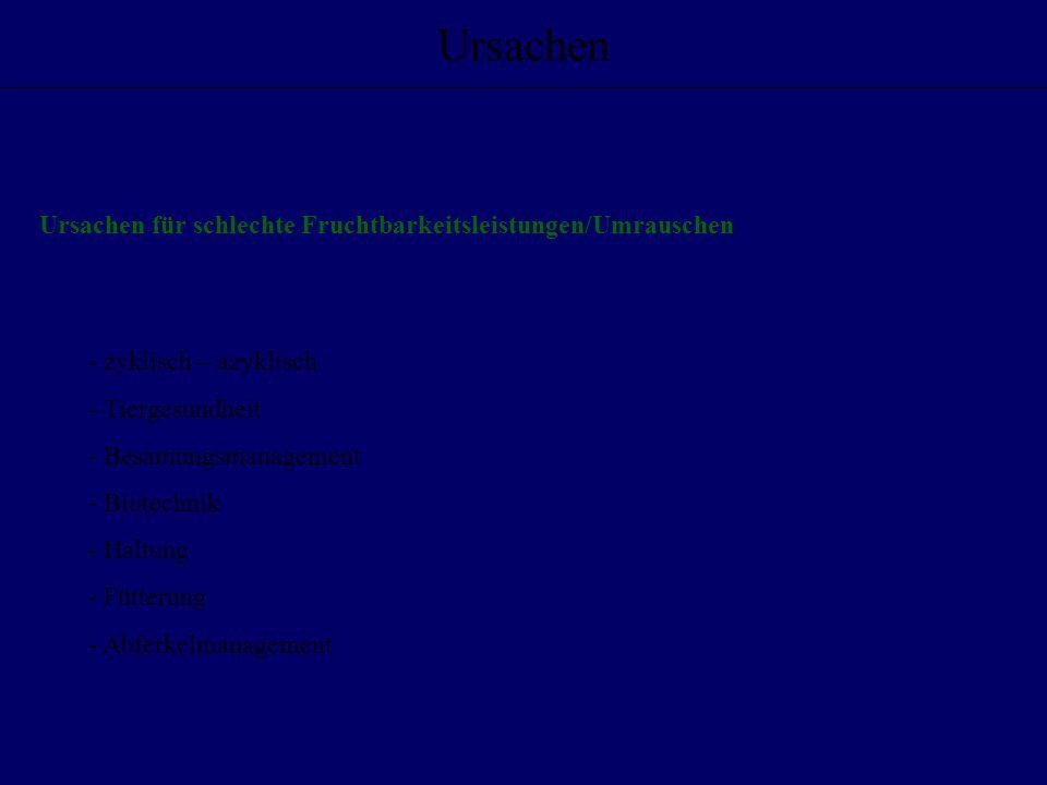 Besamungsmanagement Hormoneinsatz - PMSG