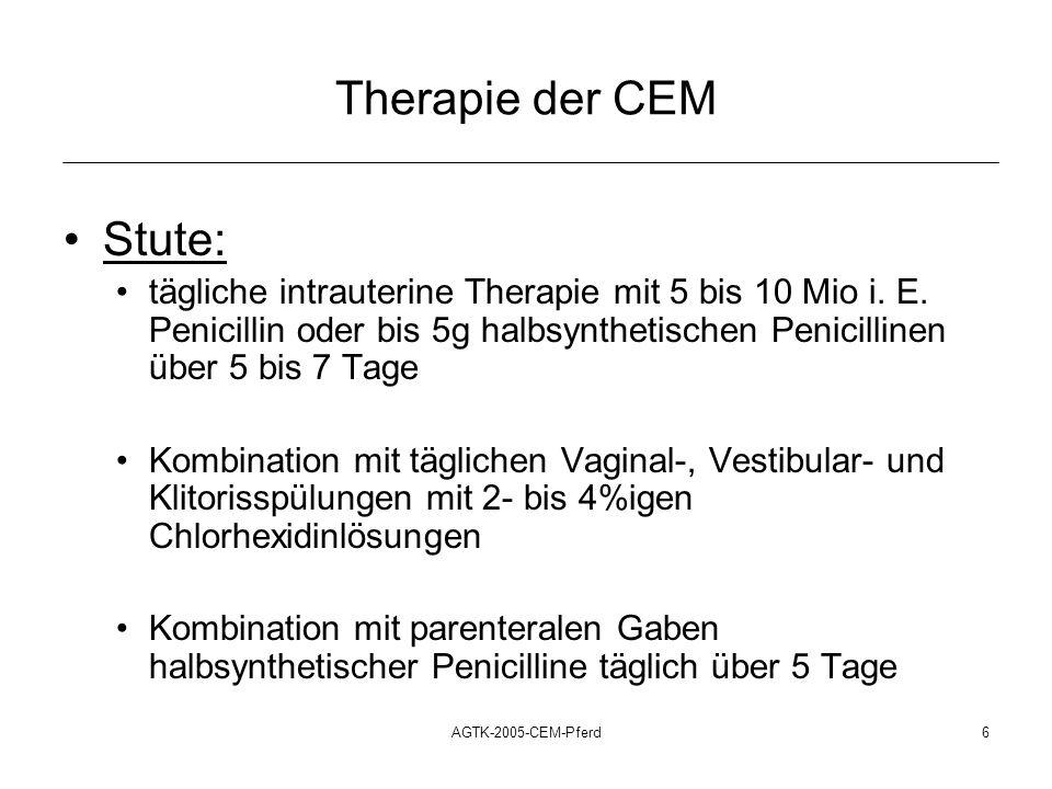 AGTK-2005-CEM-Pferd7 Therapie der CEM Hengst : gründliche Reinigung des Penis und Präputiums tägliche Waschungen des Penis mit 4%-igen Chlorhexidinlösungen über 5 Tage jeweils anschließendes Auftragen von Nitrofurazon- haltigen Salben