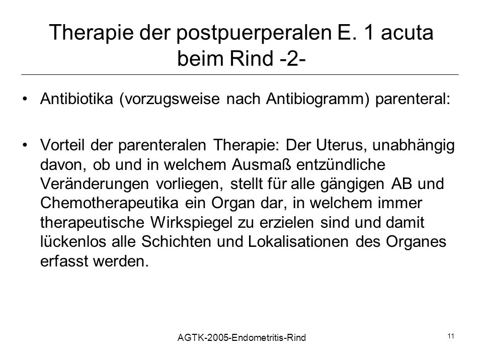 AGTK-2005-Endometritis-Rind 11 Therapie der postpuerperalen E. 1 acuta beim Rind -2- Antibiotika (vorzugsweise nach Antibiogramm) parenteral: Vorteil
