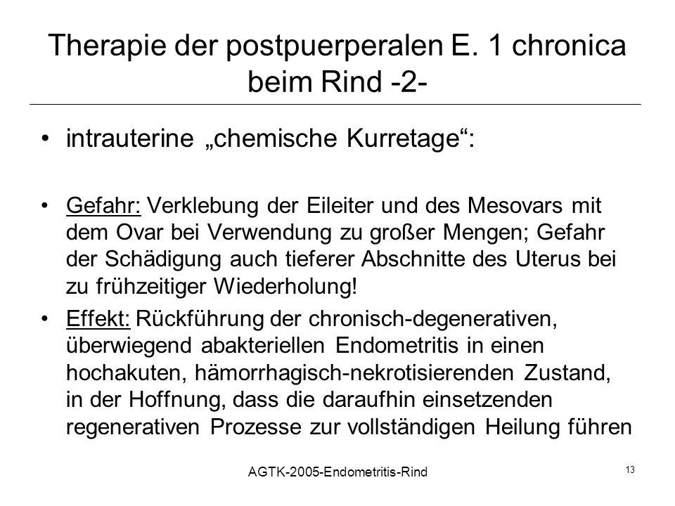 AGTK-2005-Endometritis-Rind 13 Therapie der postpuerperalen E. 1 chronica beim Rind -2- intrauterine chemische Kurretage: Gefahr: Verklebung der Eilei