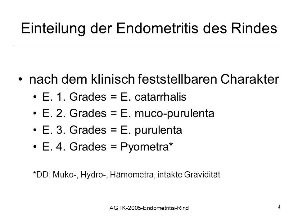 AGTK-2005-Endometritis-Rind 4 Einteilung der Endometritis des Rindes nach dem klinisch feststellbaren Charakter E. 1. Grades = E. catarrhalis E. 2. Gr
