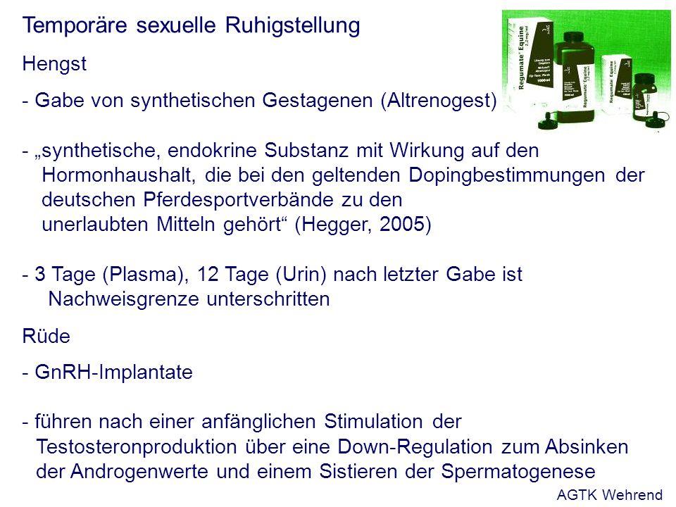 Temporäre sexuelle Ruhigstellung Hengst - Gabe von synthetischen Gestagenen (Altrenogest) - synthetische, endokrine Substanz mit Wirkung auf den Hormonhaushalt, die bei den geltenden Dopingbestimmungen der deutschen Pferdesportverbände zu den unerlaubten Mitteln gehört (Hegger, 2005) - 3 Tage (Plasma), 12 Tage (Urin) nach letzter Gabe ist Nachweisgrenze unterschritten Rüde - GnRH-Implantate - führen nach einer anfänglichen Stimulation der Testosteronproduktion über eine Down-Regulation zum Absinken der Androgenwerte und einem Sistieren der Spermatogenese AGTK Wehrend