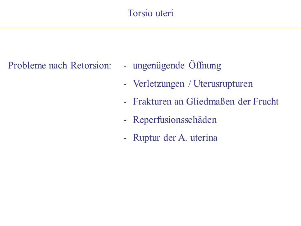 Torsio uteri Probleme nach Retorsion:- ungenügende Öffnung - Verletzungen / Uterusrupturen - Frakturen an Gliedmaßen der Frucht - Reperfusionsschäden