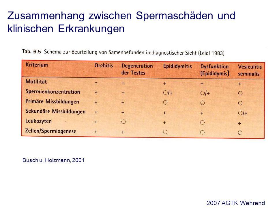 Zusammenhang zwischen Spermaschäden und klinischen Erkrankungen Busch u.