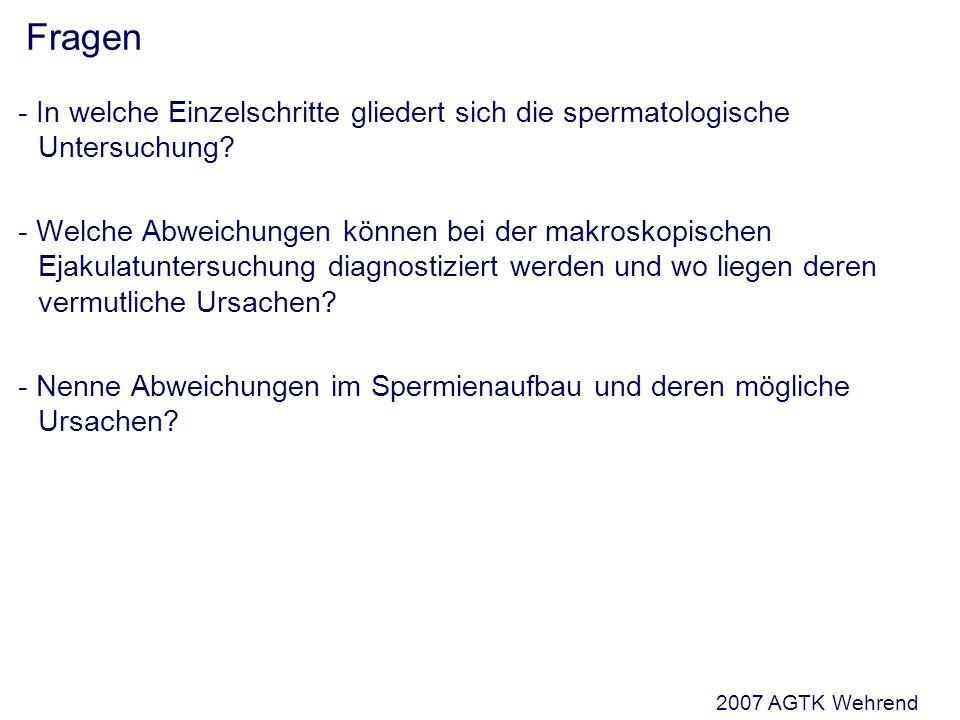 Fragen - In welche Einzelschritte gliedert sich die spermatologische Untersuchung.