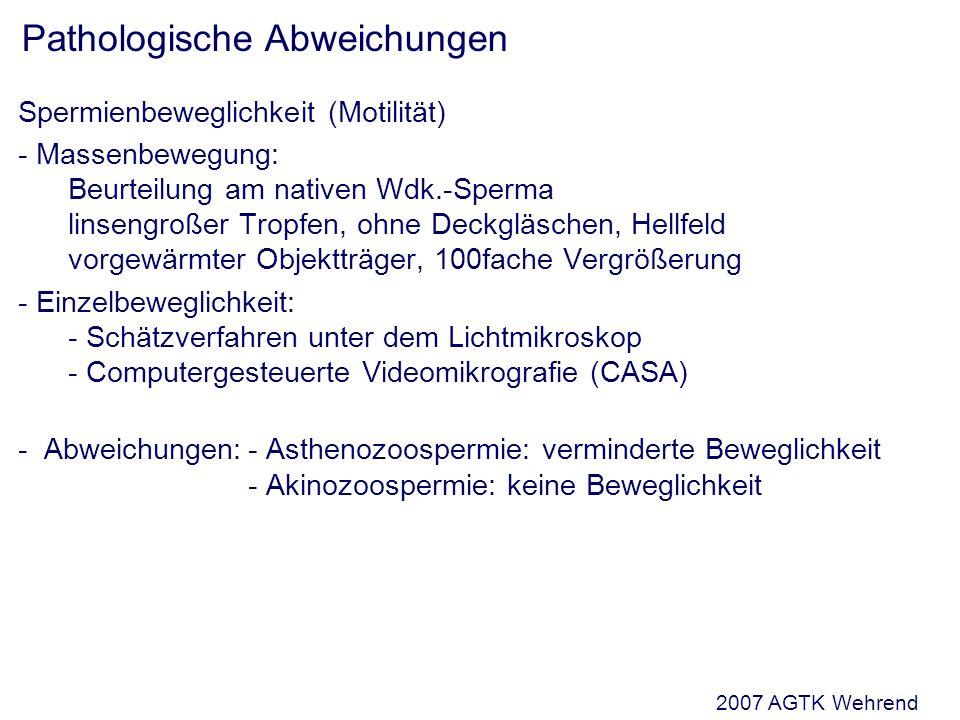 Spermienbeweglichkeit (Motilität) - Massenbewegung: Beurteilung am nativen Wdk.-Sperma linsengroßer Tropfen, ohne Deckgläschen, Hellfeld vorgewärmter Objektträger, 100fache Vergrößerung - Einzelbeweglichkeit: - Schätzverfahren unter dem Lichtmikroskop - Computergesteuerte Videomikrografie (CASA) - Abweichungen:- Asthenozoospermie: verminderte Beweglichkeit - Akinozoospermie: keine Beweglichkeit Pathologische Abweichungen 2007 AGTK Wehrend
