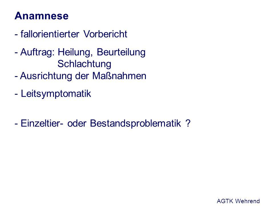 Anamnese - fallorientierter Vorbericht - Auftrag: Heilung, Beurteilung Schlachtung - Ausrichtung der Maßnahmen - Leitsymptomatik - Einzeltier- oder Bestandsproblematik .