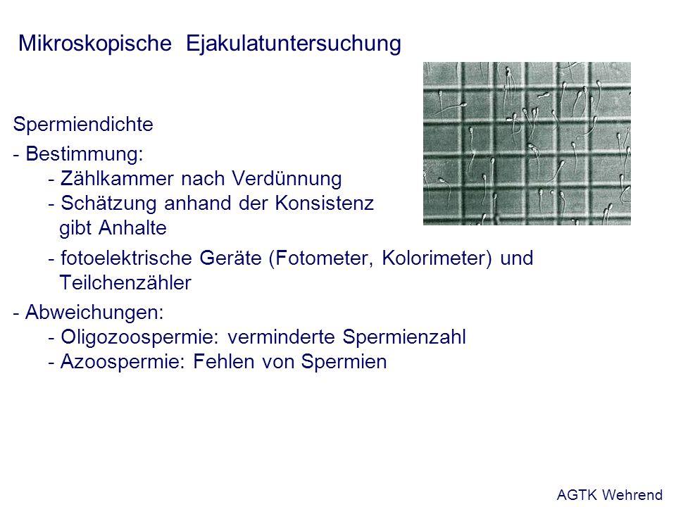 Mikroskopische Ejakulatuntersuchung Spermiendichte - Bestimmung: - Zählkammer nach Verdünnung - Schätzung anhand der Konsistenz gibt Anhalte - fotoelektrische Geräte (Fotometer, Kolorimeter) und Teilchenzähler - Abweichungen: - Oligozoospermie: verminderte Spermienzahl - Azoospermie: Fehlen von Spermien AGTK Wehrend