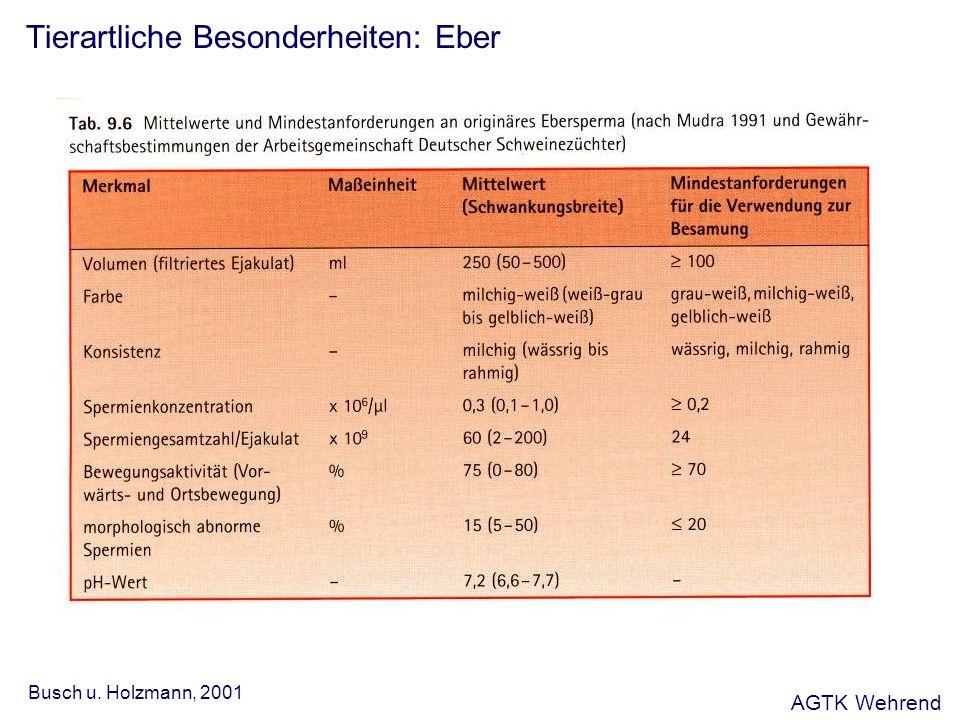 Tierartliche Besonderheiten: Eber Busch u. Holzmann, 2001 AGTK Wehrend