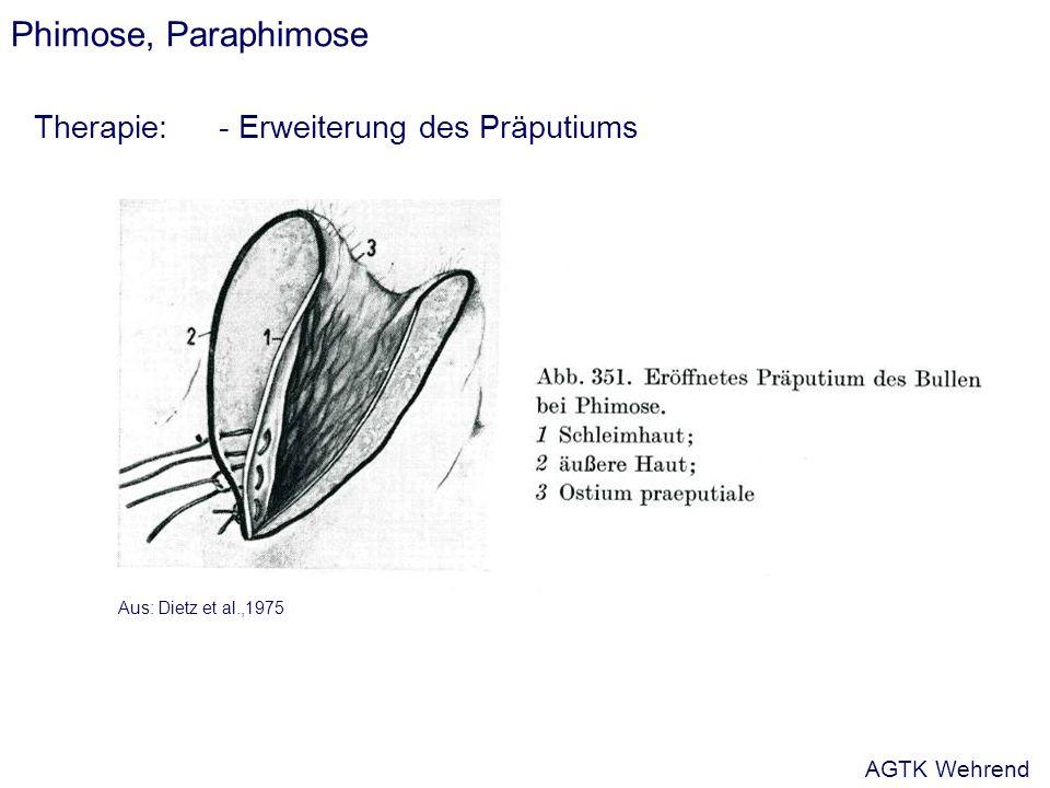 Phimose, Paraphimose Therapie:- Erweiterung des Präputiums Aus: Dietz et al.,1975 AGTK Wehrend