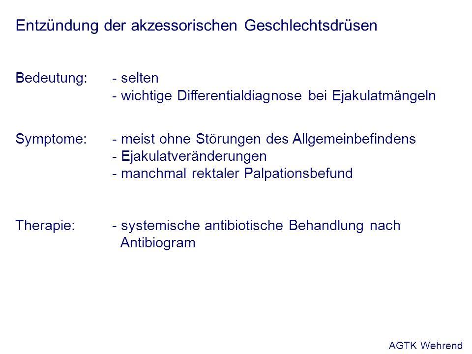 Entzündung der akzessorischen Geschlechtsdrüsen Bedeutung: - selten - wichtige Differentialdiagnose bei Ejakulatmängeln Symptome:- meist ohne Störungen des Allgemeinbefindens - Ejakulatveränderungen - manchmal rektaler Palpationsbefund Therapie:- systemische antibiotische Behandlung nach Antibiogram AGTK Wehrend
