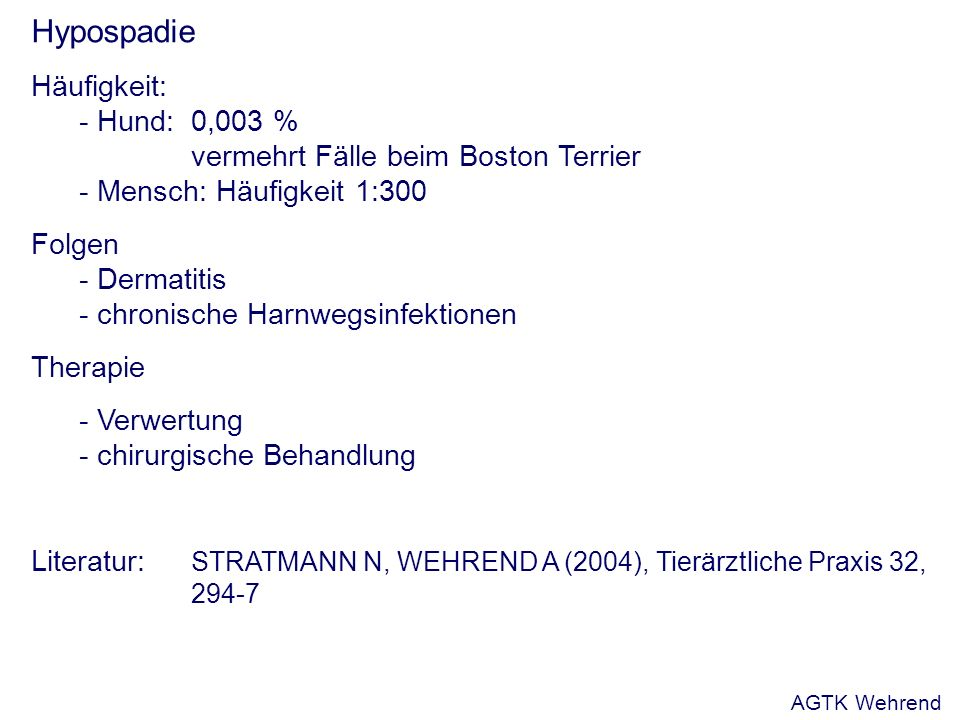Hypospadie Häufigkeit: - Hund: 0,003 % vermehrt Fälle beim Boston Terrier - Mensch: Häufigkeit 1:300 Folgen - Dermatitis - chronische Harnwegsinfektionen Therapie - Verwertung - chirurgische Behandlung Literatur: STRATMANN N, WEHREND A (2004), Tierärztliche Praxis 32, 294-7 AGTK Wehrend