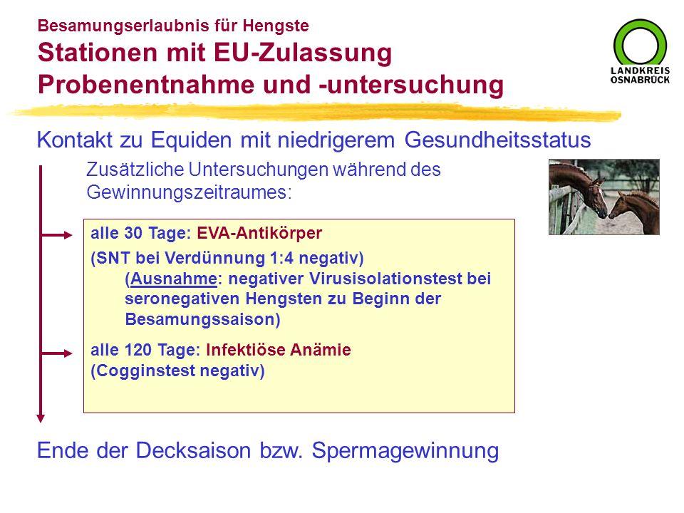 Besamungserlaubnis für Hengste Stationen mit EU-Zulassung Probenentnahme und -untersuchung Kontakt zu Equiden mit niedrigerem Gesundheitsstatus Zusätz