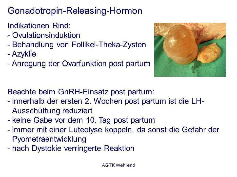 AGTK Wehrend Gonadotropin-Releasing-Hormon Indikationen Rind: - Ovulationsinduktion - Behandlung von Follikel-Theka-Zysten - Azyklie - Anregung der Ov