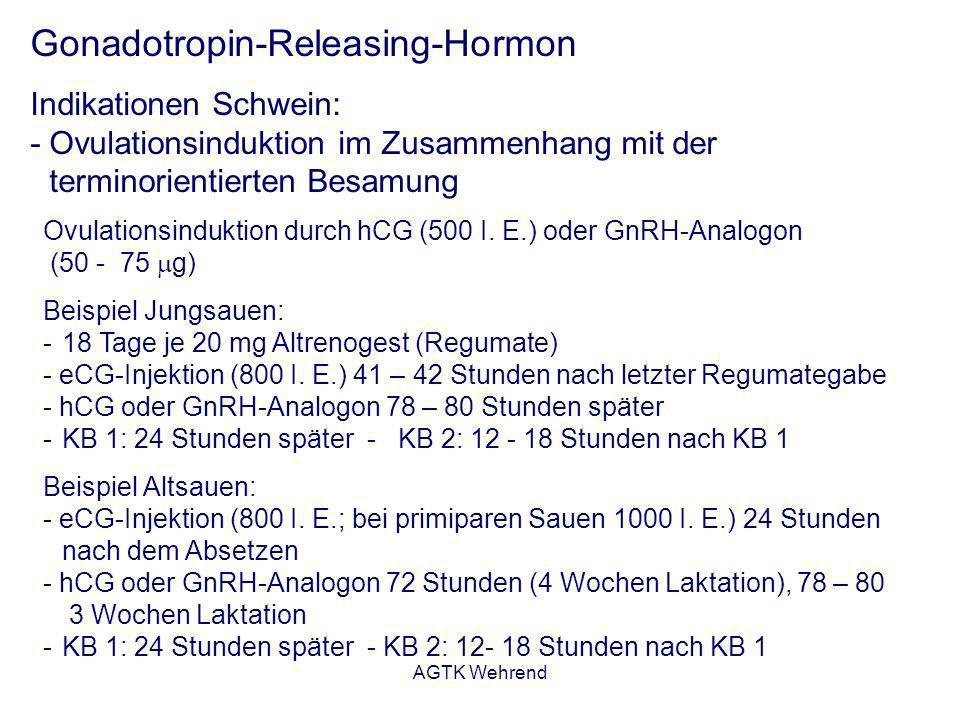 AGTK Wehrend Gonadotropin-Releasing-Hormon Indikationen Schwein: - Ovulationsinduktion im Zusammenhang mit der terminorientierten Besamung Ovulationsi