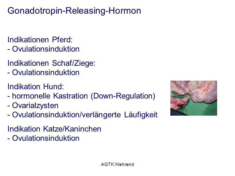 AGTK Wehrend Gonadotropin-Releasing-Hormon Indikationen Pferd: - Ovulationsinduktion Indikationen Schaf/Ziege: - Ovulationsinduktion Indikation Hund: