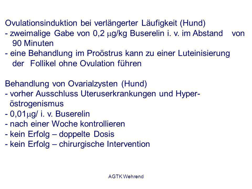 AGTK Wehrend Ovulationsinduktion bei verlängerter Läufigkeit (Hund) - zweimalige Gabe von 0,2 g/kg Buserelin i. v. im Abstand von 90 Minuten - eine Be