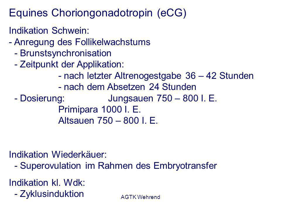 AGTK Wehrend Equines Choriongonadotropin (eCG) Indikation Schwein: - Anregung des Follikelwachstums - Brunstsynchronisation - Zeitpunkt der Applikatio