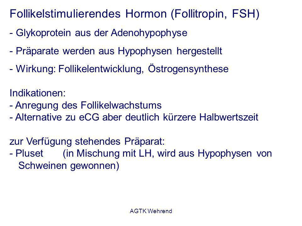 AGTK Wehrend Follikelstimulierendes Hormon (Follitropin, FSH) - Glykoprotein aus der Adenohypophyse - Präparate werden aus Hypophysen hergestellt - Wi