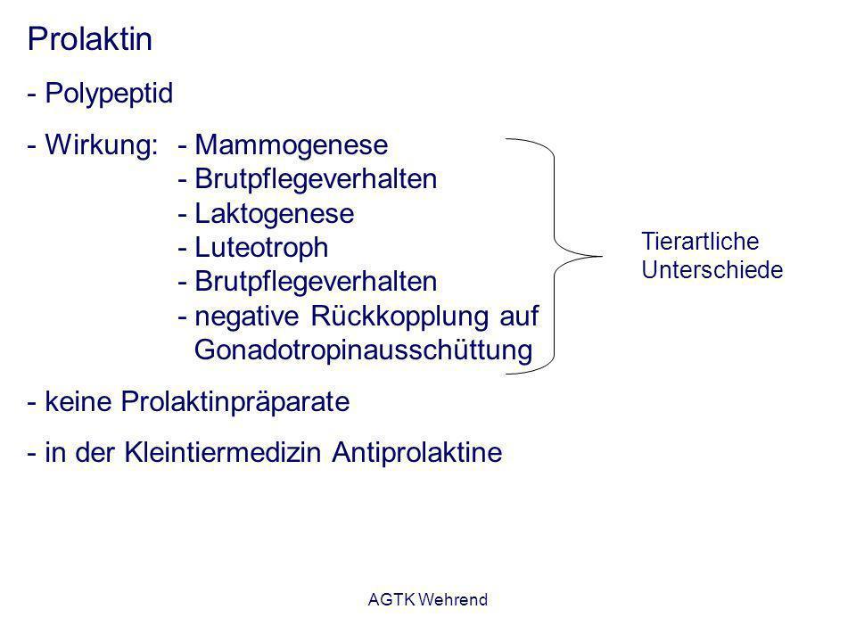 AGTK Wehrend Prolaktin - Polypeptid - Wirkung:- Mammogenese - Brutpflegeverhalten - Laktogenese - Luteotroph - Brutpflegeverhalten - negative Rückkopp