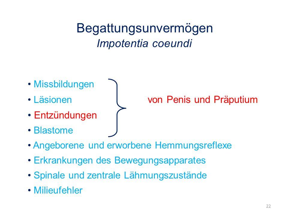 Begattungsunvermögen Impotentia coeundi Missbildungen Läsionen von Penis und Präputium Entzündungen Blastome Angeborene und erworbene Hemmungsreflexe