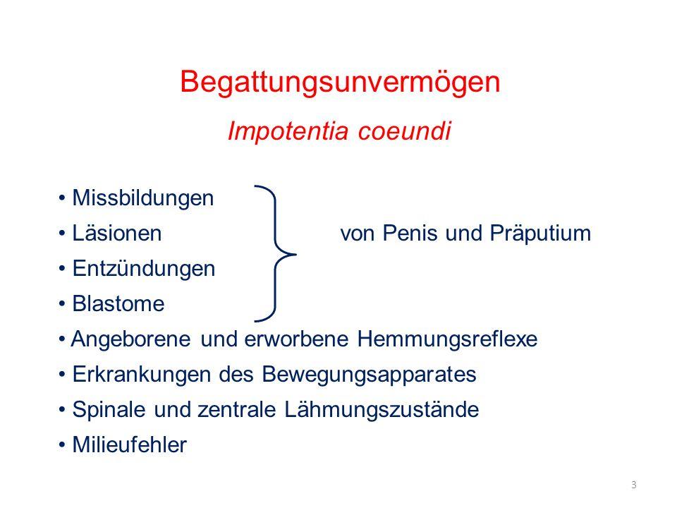 Begattungsunvermögen Impotentia coeundi Missbildungen Läsionenvon Penis und Präputium Entzündungen Blastome Angeborene und erworbene Hemmungsreflexe E
