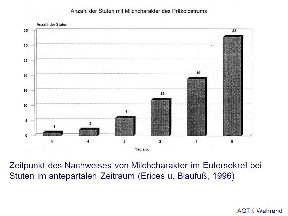 Zeitpunkt des Nachweises von Milchcharakter im Eutersekret bei Stuten im antepartalen Zeitraum (Erices u.