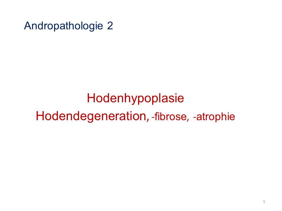 Zeugungsunfähigkeit Impotentia generandi Hermaphroditismus Kryptorchismus Hodenhypoplasie Hodendegeneration, -fibrose, -atrophie Hodenentzündungen Hodenblastome Missbildungen und Entzündungen der Nebenhoden Traumata und Entzündungen des Hodensackes Entzündungen, Dysplasie und Dystrophie der akzessorischen Geschlechtsdrüsen Ejakulationsstörungen Hodendegeneration, -fibrose, -atrophie Hodenentzündungen Hodenblastome Missbildungen und Entzündungen der Nebenhoden Traumata und Entzündungen des Hodensackes Entzündungen, Dysplasie und Dystrophie der Anhangdrüse Ejakulationsstörungen 2