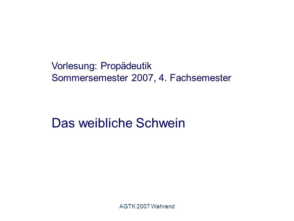 AGTK 2007 Wehrend Indikationen - Zuchttauglichkeitsuntersuchung - Überprüfung biotechnischer/zootechnischer Maßnahmen - Zyklusansprache/Brunstkontrolle -Trächtigkeitsuntersuchung - Diagnostik von Krankheiten