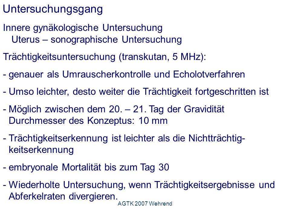 AGTK 2007 Wehrend Untersuchungsgang Innere gynäkologische Untersuchung Uterus – sonographische Untersuchung Trächtigkeitsuntersuchung (transkutan, 5 MHz): - genauer als Umrauscherkontrolle und Echolotverfahren -Umso leichter, desto weiter die Trächtigkeit fortgeschritten ist - Möglich zwischen dem 20.