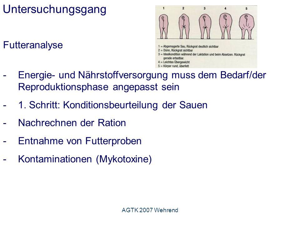 AGTK 2007 Wehrend Untersuchungsgang Futteranalyse -Energie- und Nährstoffversorgung muss dem Bedarf/der Reproduktionsphase angepasst sein -1.