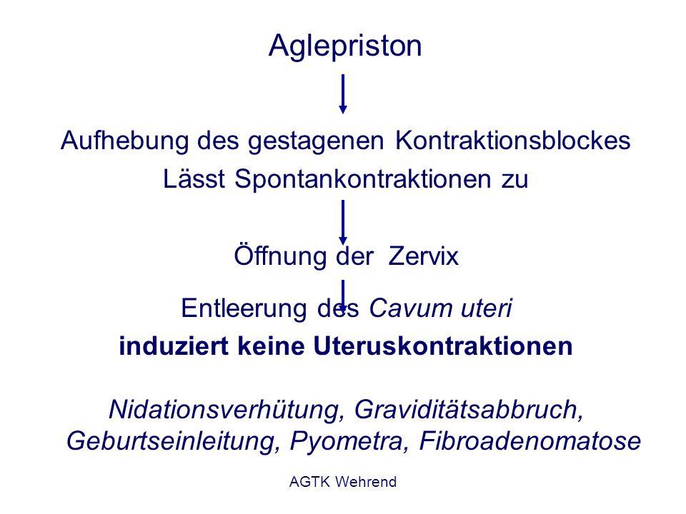 AGTK Wehrend Aglepriston Aufhebung des gestagenen Kontraktionsblockes Lässt Spontankontraktionen zu Öffnung der Zervix Entleerung des Cavum uteri indu