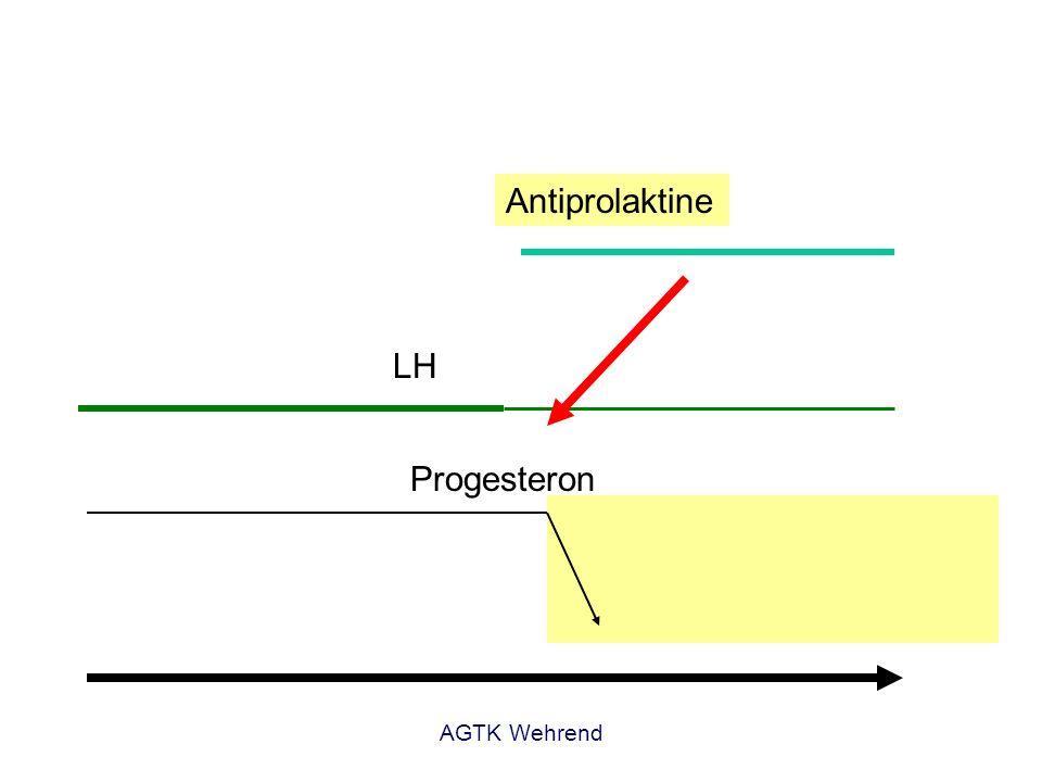 AGTK Wehrend Progesteron LH Prolaktin Antiprolaktine