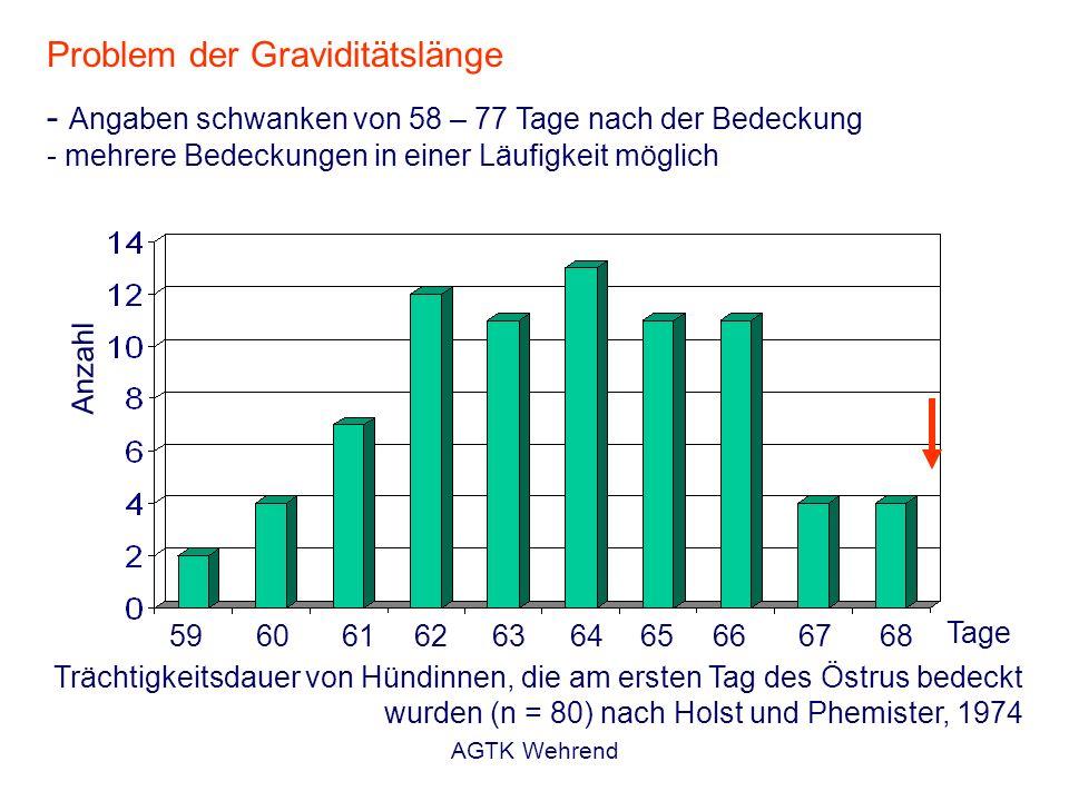 AGTK Wehrend Trächtigkeitsdauer von Hündinnen, die am ersten Tag des Östrus bedeckt wurden (n = 80) nach Holst und Phemister, 1974 59 60 61 62 63 64 6