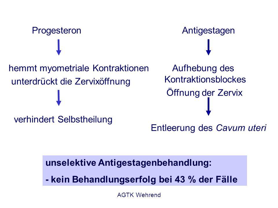 AGTK Wehrend hemmt myometriale Kontraktionen unterdrückt die Zervixöffnung verhindert Selbstheilung Progesteron unselektive Antigestagenbehandlung: -