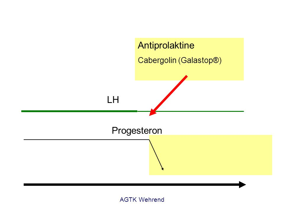 AGTK Wehrend Progesteron LH Prolaktin Antiprolaktine Cabergolin (Galastop®)