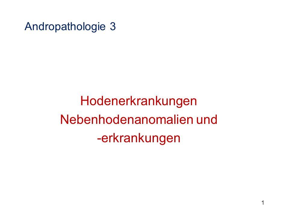 Z eugungsunfähigkeit Impotentia generandi Hermaphroditismus Hermaphroditismus Kryptorchismus Kryptorchismus Hodenhypoplasie Hodenhypoplasie Hodendegeneration, -fibrose, -atrophie Hodendegeneration, -fibrose, -atrophie Hodenentzündungen Hodenentzündungen Hodenblastome Hodenblastome Missbildungen und Entzündungen der Nebenhoden Missbildungen und Entzündungen der Nebenhoden Traumata und Entzündungen des Hodensackes Traumata und Entzündungen des Hodensackes Entzündungen, Dysplasie und Dystrophie der Entzündungen, Dysplasie und Dystrophie der akzessorischen Geschlechtsdrüsen akzessorischen Geschlechtsdrüsen Ejakulationsstörungen Ejakulationsstörungen Hodendegeneration, -fibrose, -atrophie Hodendegeneration, -fibrose, -atrophie Hodenentzündungen Hodenentzündungen Hodenblastome Hodenblastome Missbildungen und Entzündungen der Nebenhoden Missbildungen und Entzündungen der Nebenhoden Traumata und Entzündungen des Hodensackes Traumata und Entzündungen des Hodensackes Entzündungen, Dysplasie und Dystrophie der Anhangdrüse Entzündungen, Dysplasie und Dystrophie der Anhangdrüse Ejakulationsstörungen Ejakulationsstörungen 22