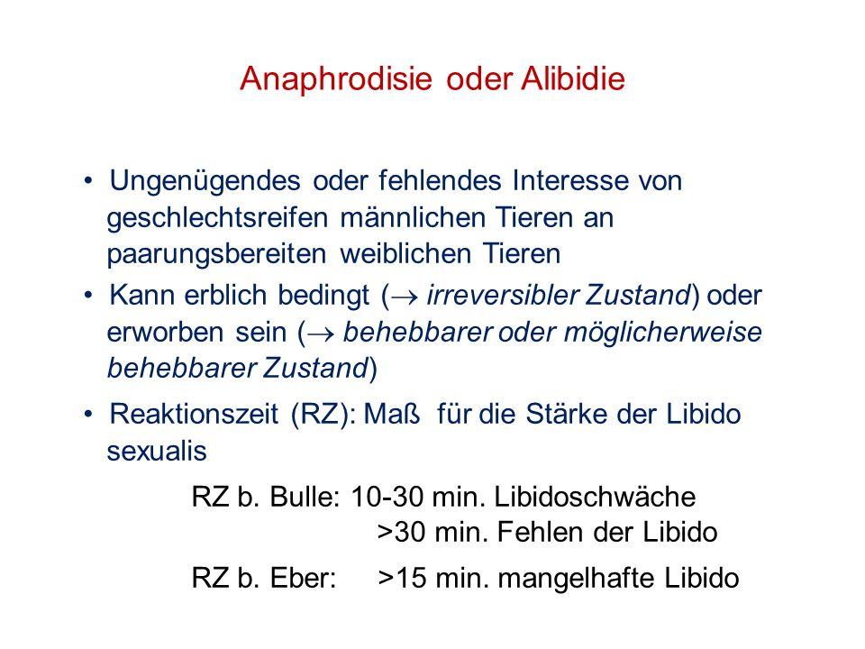 Anaphrodisie oder Alibidie Ungenügendes oder fehlendes Interesse von geschlechtsreifen männlichen Tieren an paarungsbereiten weiblichen Tieren Kann er