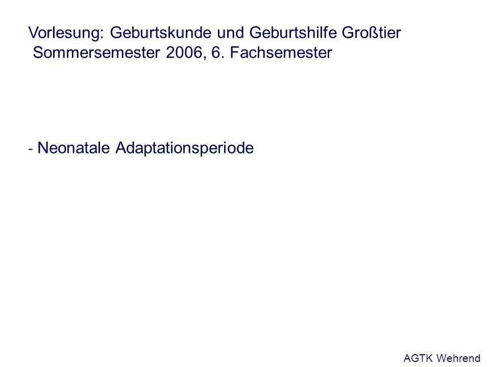 Vorlesung: Geburtskunde und Geburtshilfe Großtier Sommersemester 2006, 6.